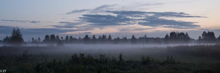 krajobraz  z mgłą