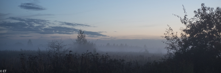 krajobraz jesienny o zmroku